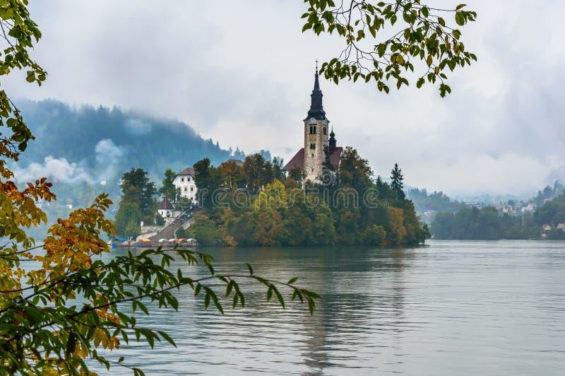 Lac saigné en automne, Slovénie Lac mountain avec la petites île et église image stock