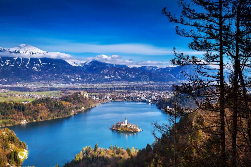 Lac saigné stupéfiant, Slovénie, l'Europe image libre de droits