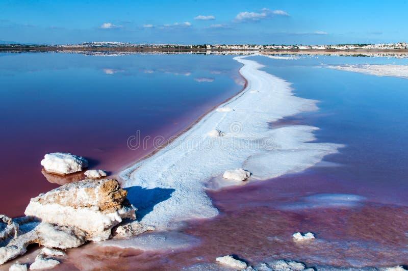 Lac salé rose de Torrevieja l'espagne photographie stock