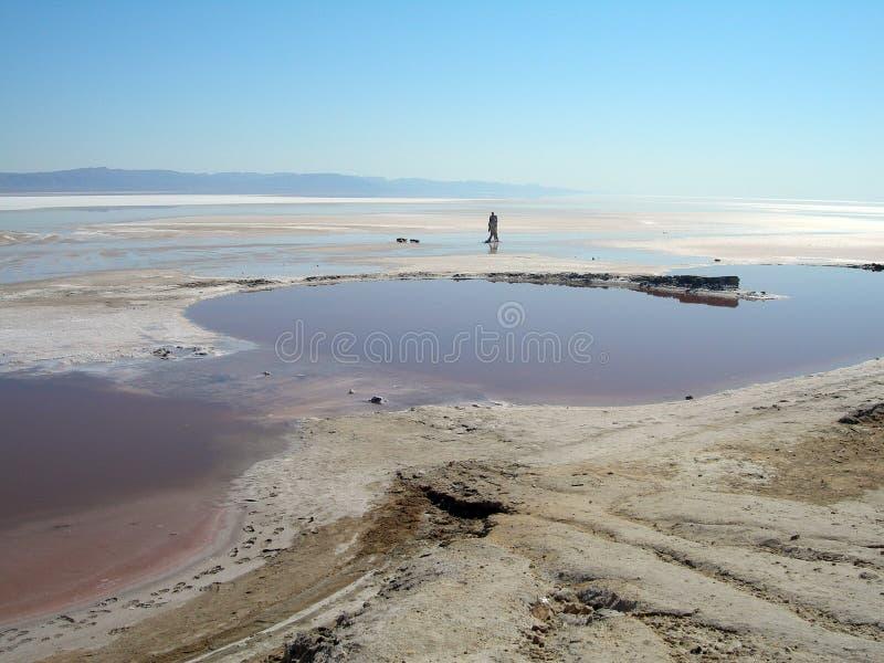 Lac salt 4 image libre de droits