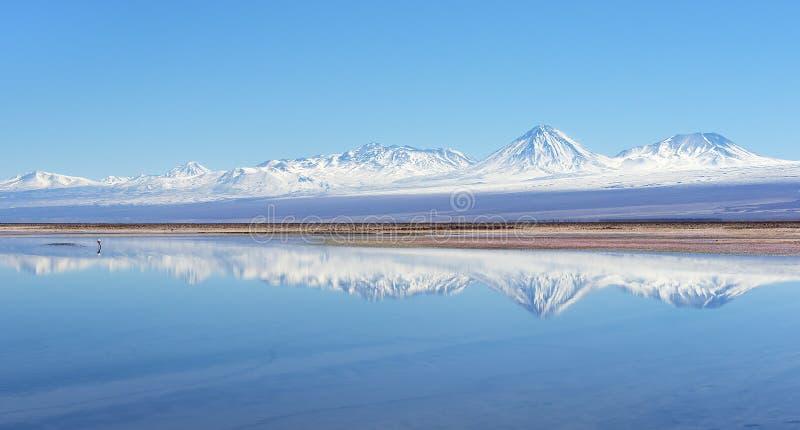 Lac salt dans le désert d'Atacama image libre de droits
