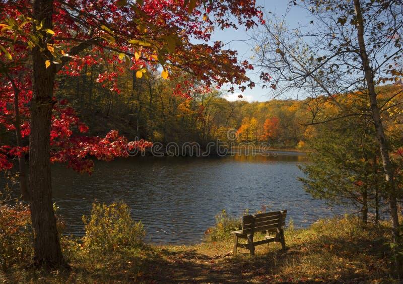 Lac scénique d'automne image libre de droits