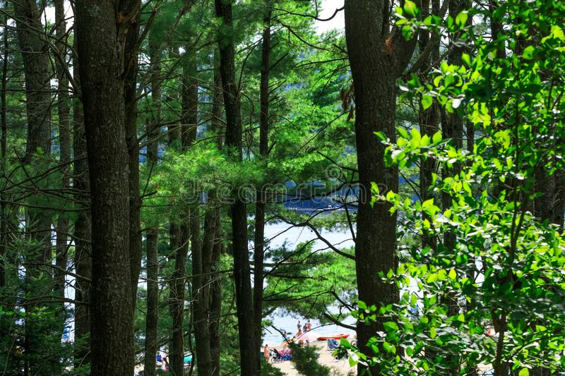 Going to a beach of Lac-Simon for a swim is a typical leisure activity in Quebec at summer time. People enjoy a sunny day. stock photography