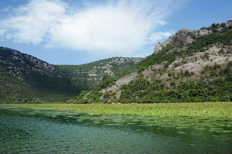 Lac Skadar photos stock