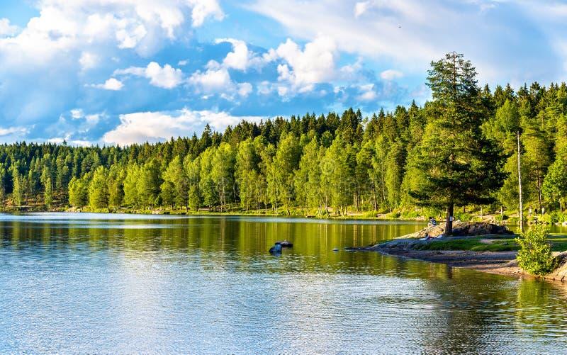 Lac Sognsvann au nord d'Oslo photo libre de droits