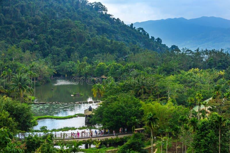 Lac sous la pluie Forest Hainan, Chine de Yanoda de forêt tropicale photo libre de droits