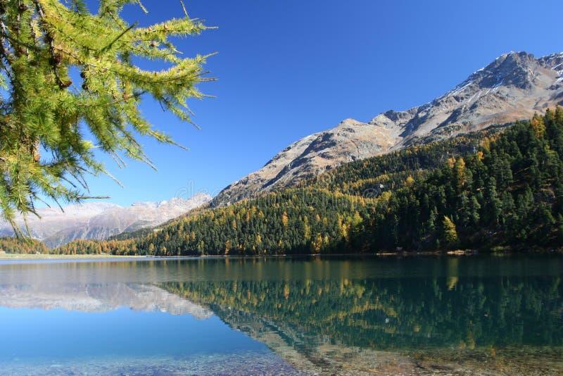 Lac suisse d'automne images libres de droits