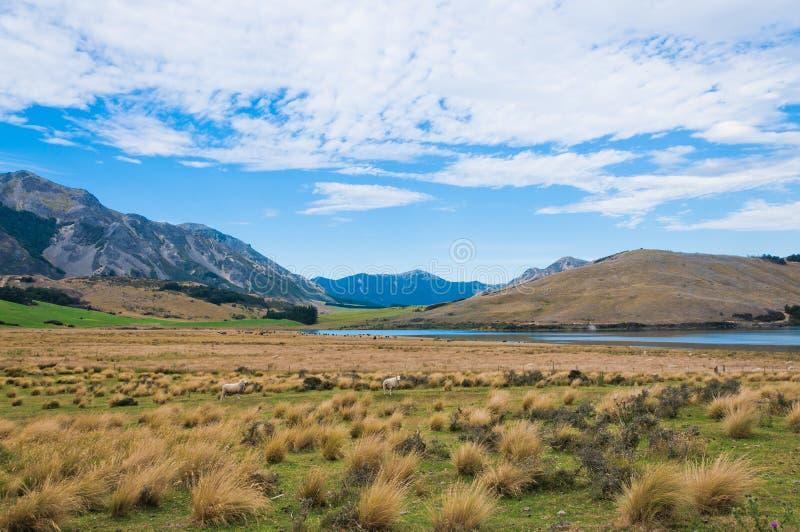 Lac Sumner, Cantorbéry, Nouvelle-Zélande image libre de droits
