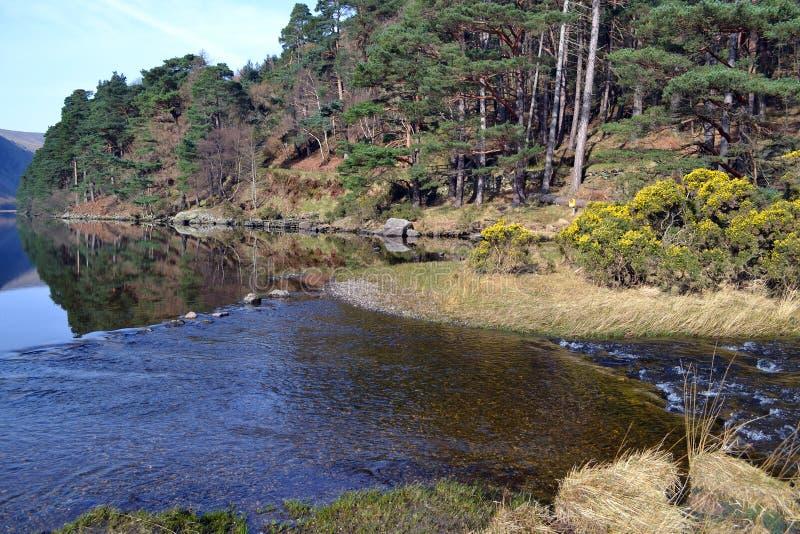 Lac supérieur dans Glendalough Irlande photo libre de droits