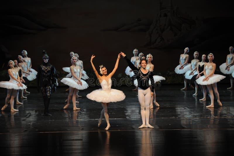 Lac swan d'appel-ballet de rideau en avance de lac swan image libre de droits