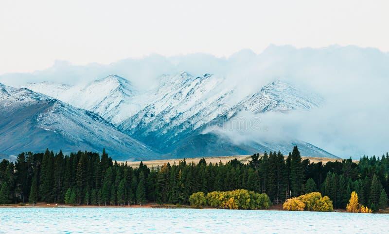 Lac Tekapo, île du sud, Nouvelle-Zélande images stock