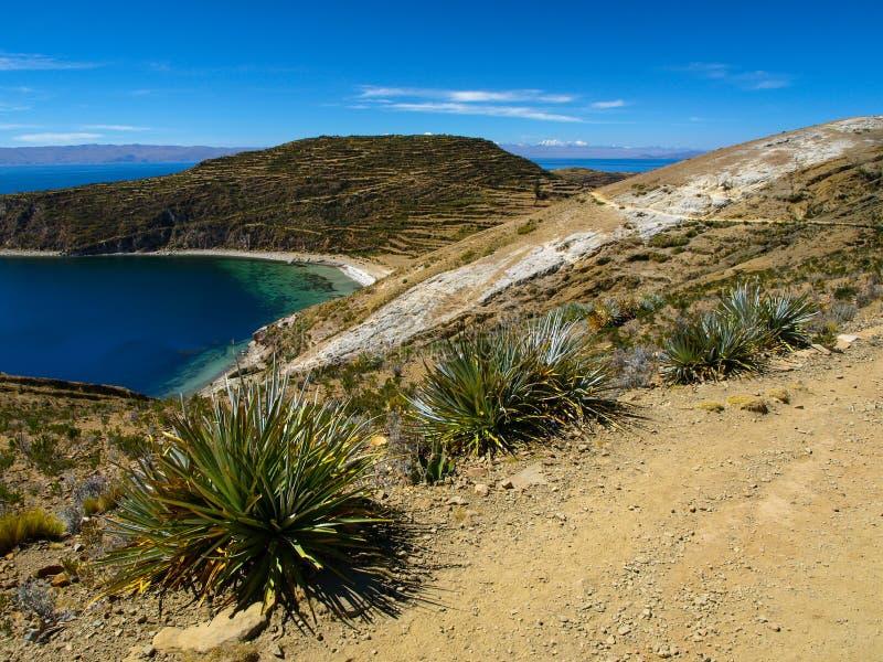 Lac Titicaca photos libres de droits