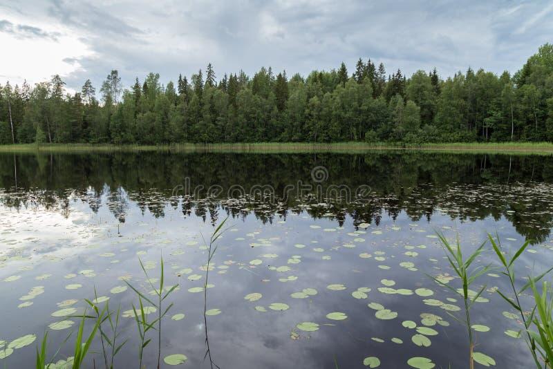 Lac tranquille et calme et réflexion d'une forêt image stock