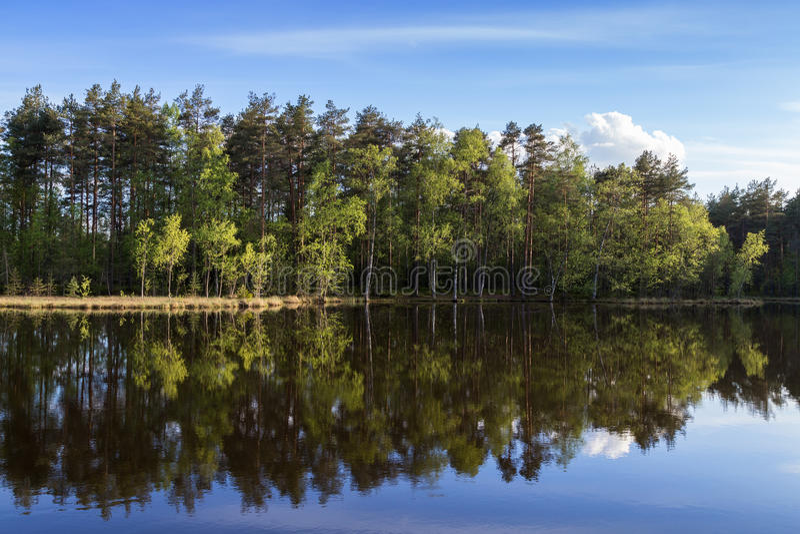 Lac tranquille et calme et réflexion d'une forêt photographie stock