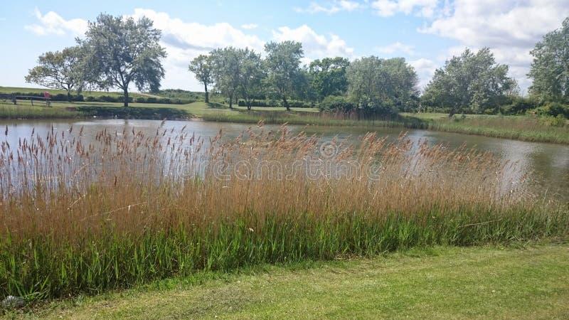 Lac un jour d'étés photographie stock