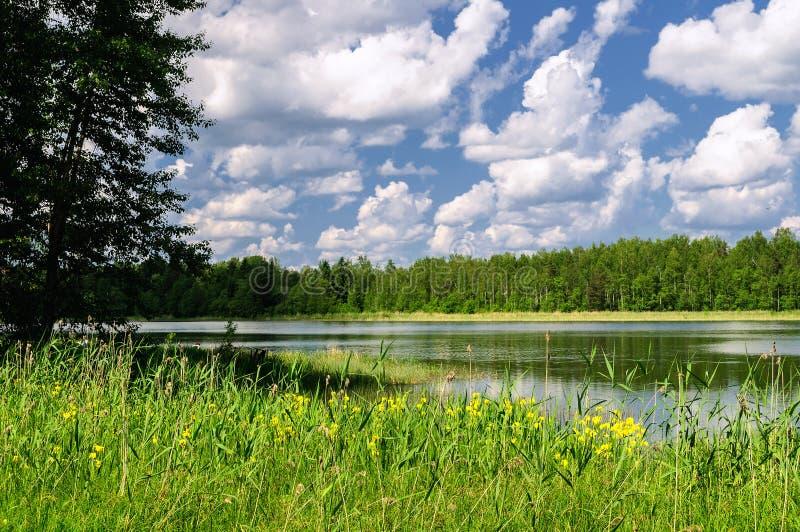 Lac Valdai image stock