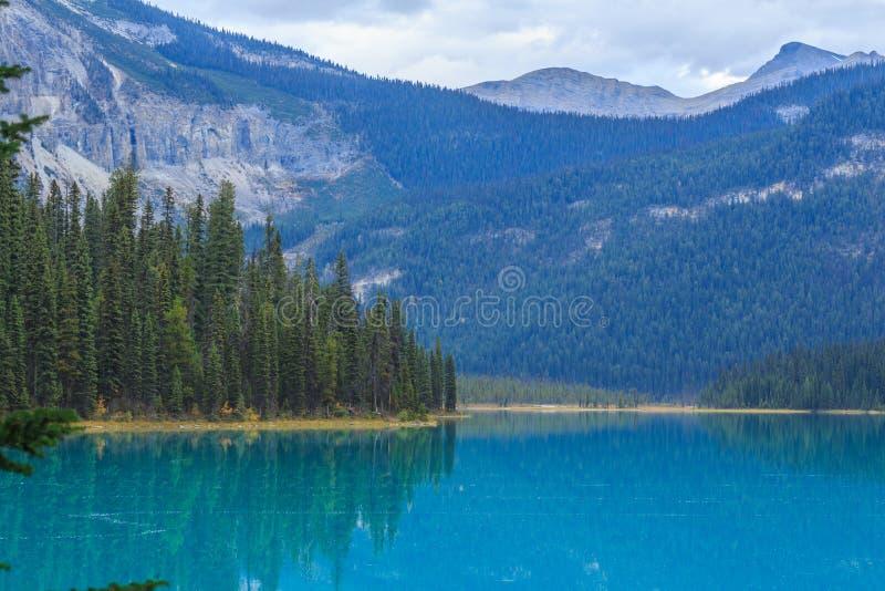 Lac vert photo libre de droits