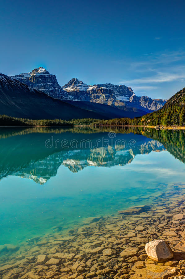 Lac waterfowl image libre de droits