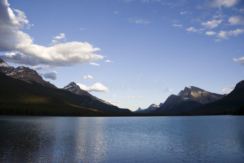 Lac waterfowl dans les Rocheuses canadiennes photo stock