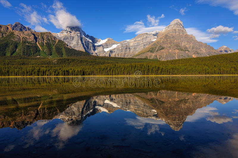 Lac waterfowl, Jasper Icefield Parkway photographie stock libre de droits