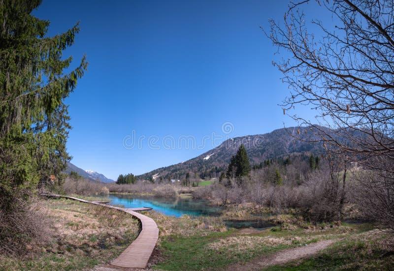 Lac Zelenci avec la passerelle de traînée d'observation dans la réserve naturelle Slovénie photographie stock libre de droits