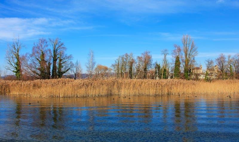 Lac Zurich en Suisse à la fin de l'automne photo stock