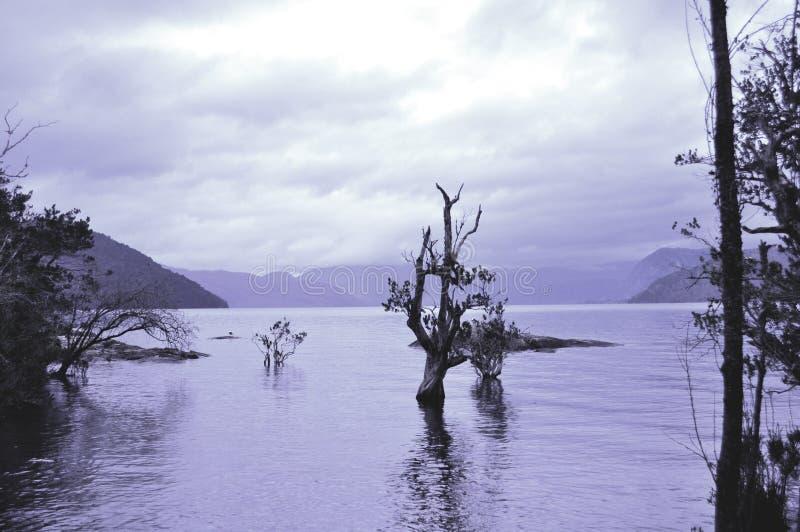 Lacar jezioro obrazy stock