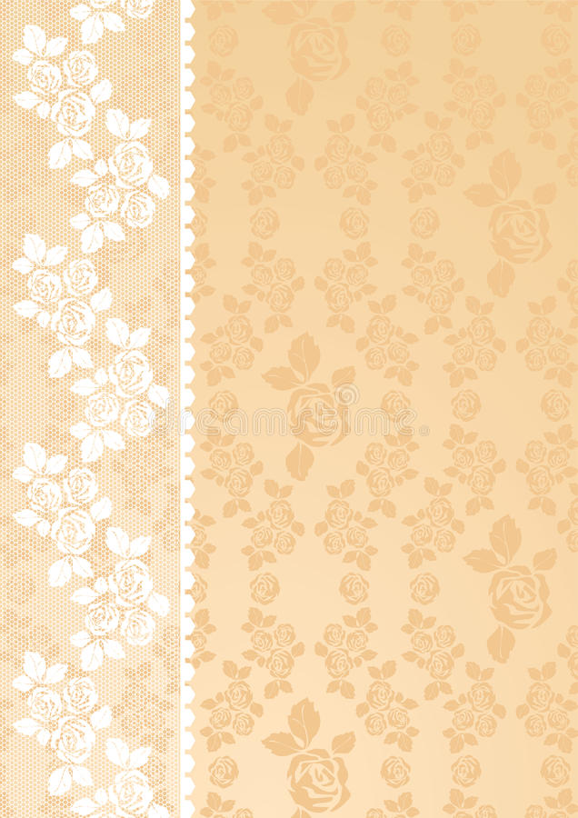 Download Lace Beige stock vector. Image of glamorous, present - 17187608