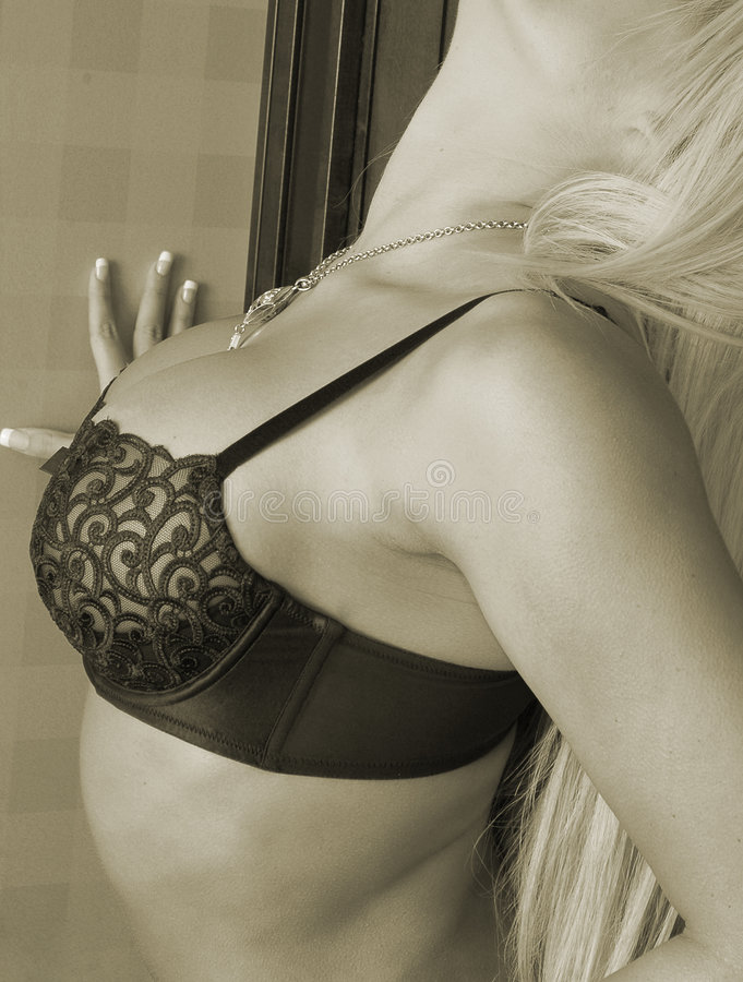 Download Lace bra stock photo. Image of brassiere, blond, woman - 457252