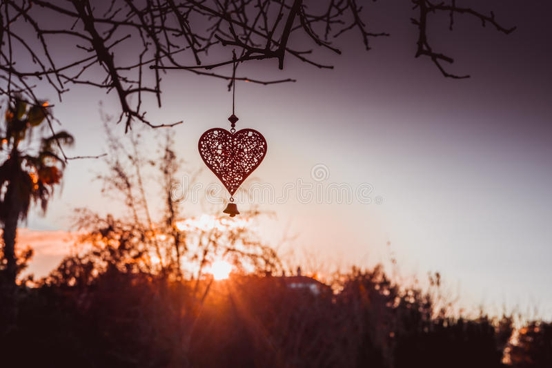 Lace heart hanging on a tree branch at the sunset in the golden rays, St. Valentine`s, romantic and love symbol. Greeting card template, wallpaper stock images