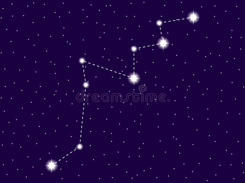 Lacerta constellation. Starry night sky. Zodiac sign. Cluster of stars and galaxies. Deep space. Vector. Illustration vector illustration