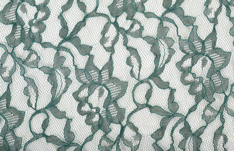 Lacet vert sur le Spandex blanc image stock
