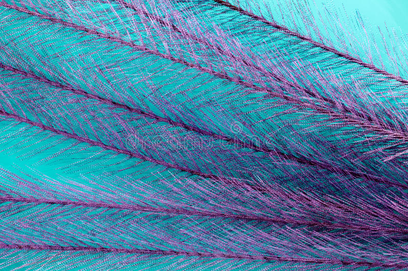 Lacey background. A blue and violet background of feathery textured material stock images