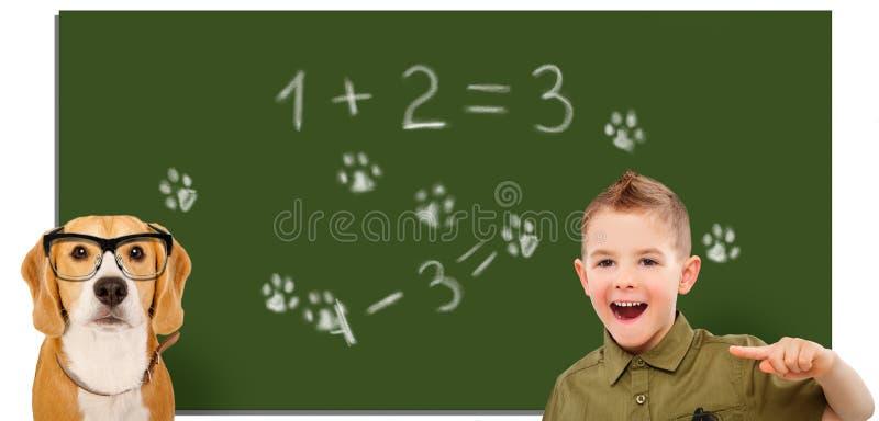 Lachende jongen, die vinger op een hond op de achtergrond van de schoolraad richten royalty-vrije stock foto's