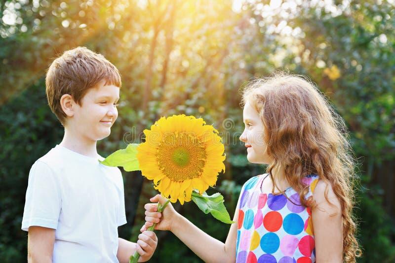 Lachender kleiner Junge und Mädchen, die Sonnenblume halten stockbild