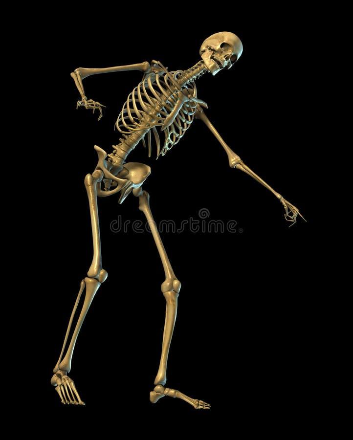 Lachendes und - auf Schwarzes mit Ausschnittspfad zeigendes Skelett lizenzfreie abbildung
