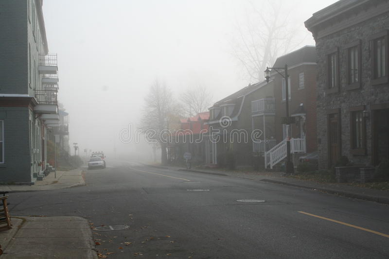 Lachine dans le brouillard photo libre de droits