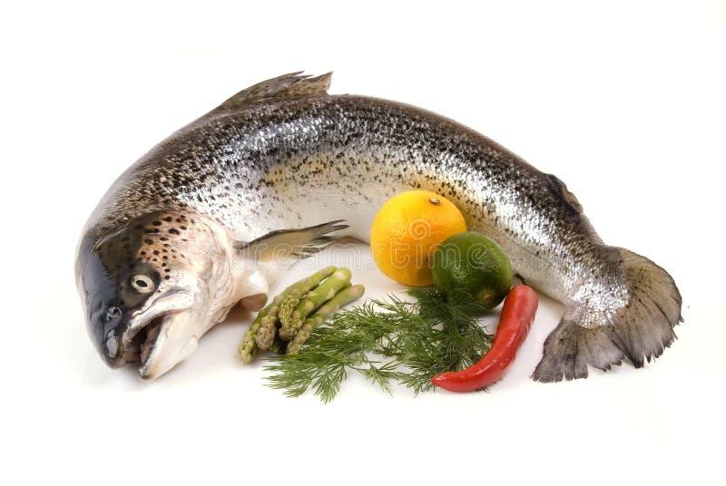 Lachse und Gemüse lizenzfreies stockbild