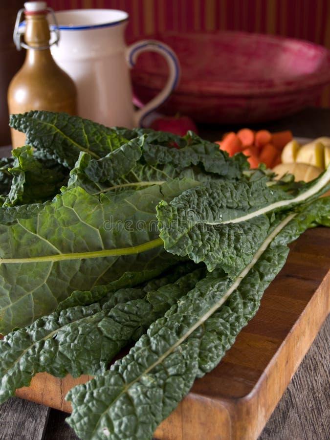 Download Lacinato Kale stock photo. Image of cutting, lacinato - 7079154