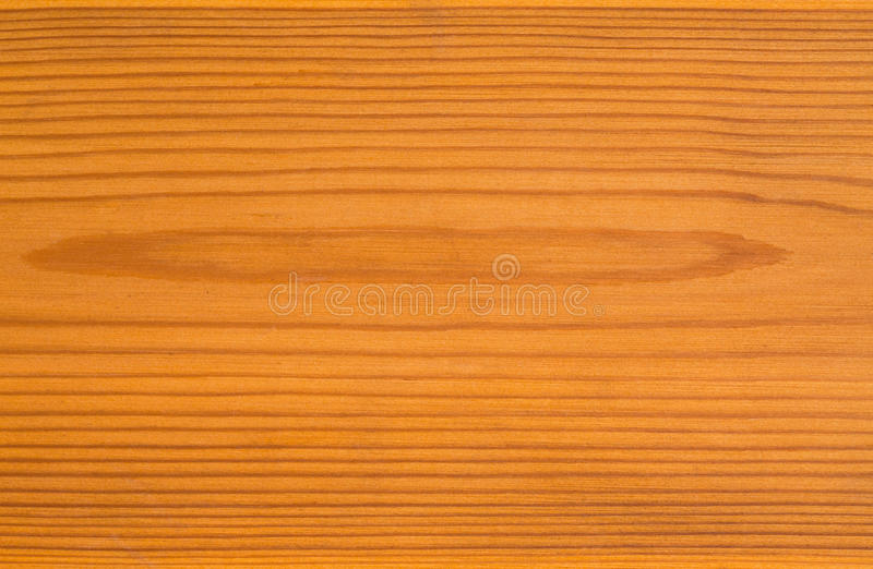Lackad trägulingtextur arkivbilder