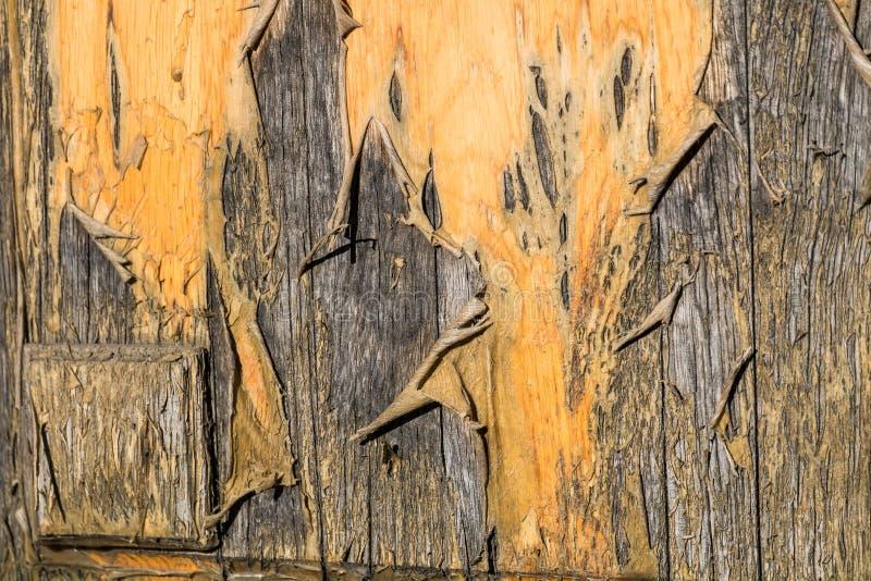 Lackiert, Oberfl?che einer alten Holzt?rnahaufnahme abziehend stockbilder