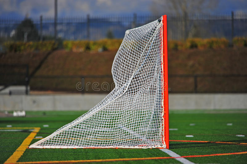 Lacrosse ball in the net royalty free stock image