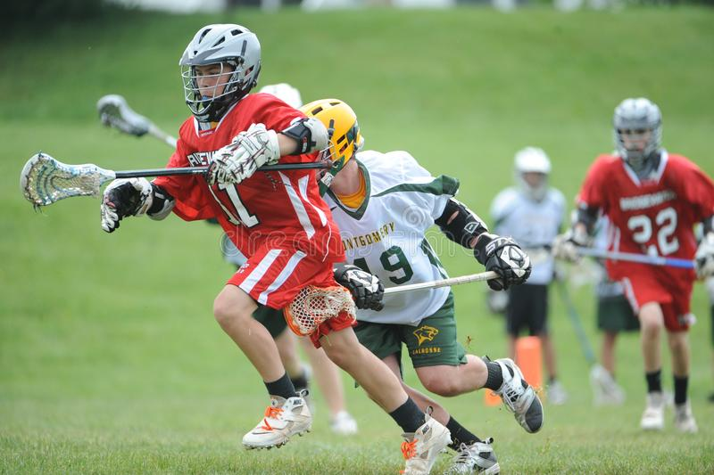 Lacrosse royalty free stock photography