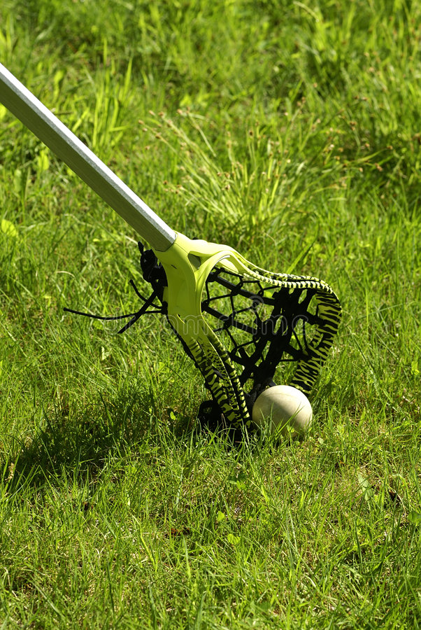 Free Lacrosse Stick In The Grass Stock Image - 3145391