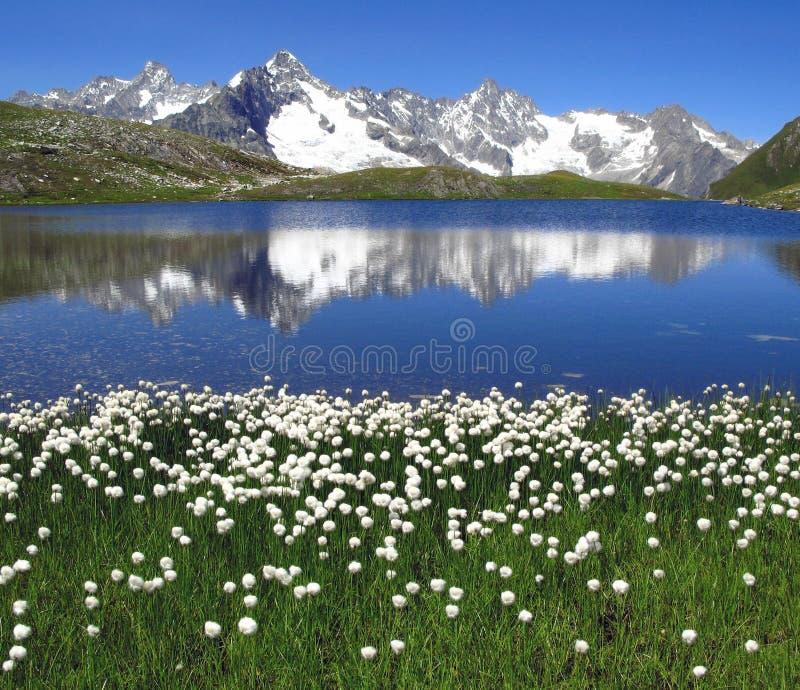 Lacs 5, Alpes européens Fenetre photo stock