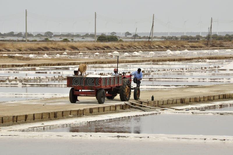 Lacs d'évaporation de sel photo libre de droits