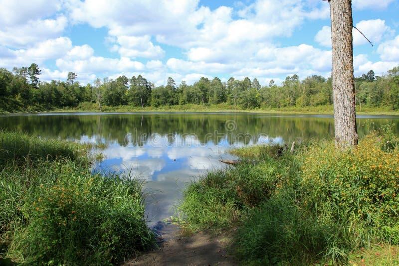 Lacs dans le parc d'état d'Itasca photo stock