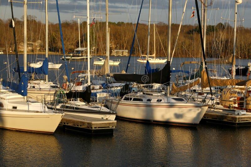 Lacs et vie nashville photos stock