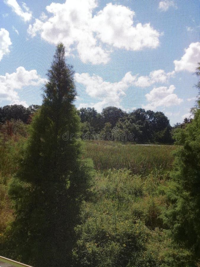 Lacs land O, la Floride image libre de droits