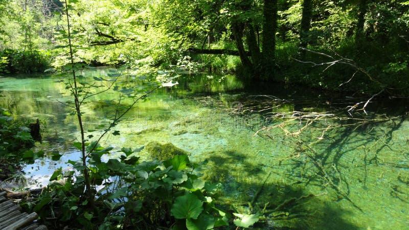 Download Lacs Plitvice image stock. Image du paysage, gentil, vert - 76080323